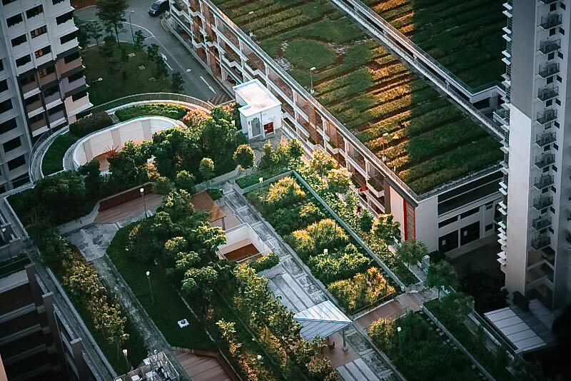 extensive and intensive green roofs on buildings
